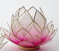 Stor lotusblomma för värmeljus, rosa