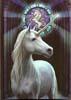 Unicorn dagbok